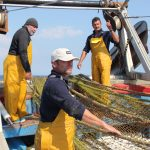 Recycling marine litter for the textile industry